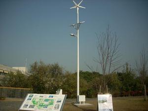 Chinawind01